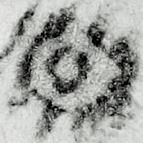 Image Description for http://tudigit.ulb.tu-darmstadt.de/esp/Inc_II_37/u_12.jpg