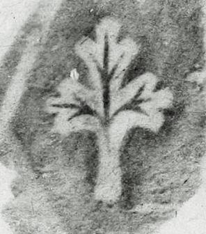 Image Description for http://tudigit.ulb.tu-darmstadt.de/esp/Inc_IV_120/u_3.jpg